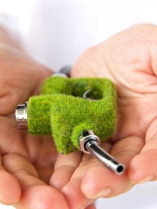 aarhus komunes ambitionn om en groen fremtid